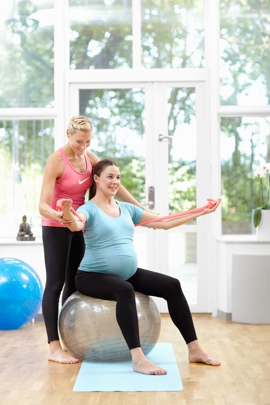 gravid bolloband 2