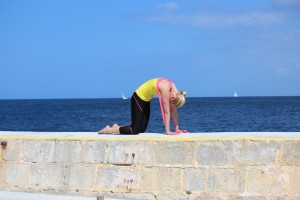 pilates complete cat stretch